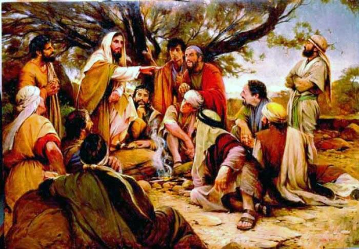 """""""Cứ xem quả thì biết họ"""" Suy niệm Lời Chúa: Thứ Tư Tuần XII – Mùa Thường Niên    23/06/2021"""