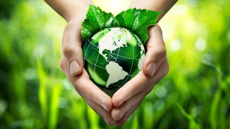 Toàn văn bản tuyên bố chung về bảo vệ thiên nhiên của các nhà lãnh đạo Kitô giáo